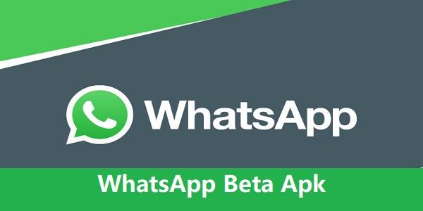 WhatsApp Beta Apk