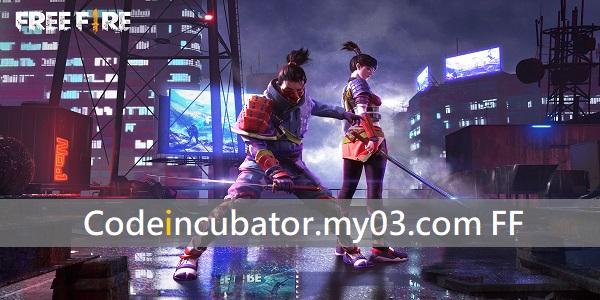 Codeincubator.my03.com FF