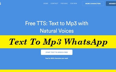 Text To Mp3 WhatsApp